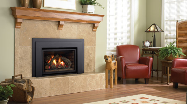 Gas Inserts Stoves